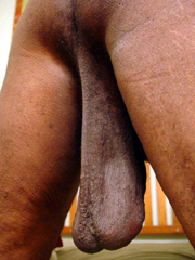 Big, saggy black nuts